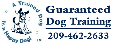 Guaranteed Dog Training